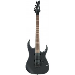 Ibanez RGIR30BE-BKF Iron Label