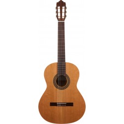 Prodipe Guitars By Altamira Recital 200