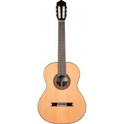Prodipe Guitars By Altamira Recital 300