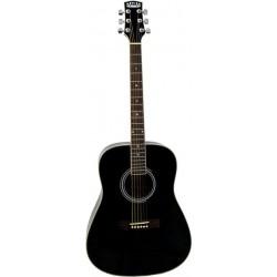 Dallas WT80BK Guitare Acoustique