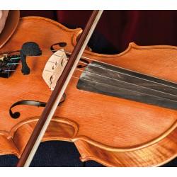 Prodipe VL21 Lanen Violin et Alto