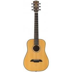 Alvarez RT26 Guitare Acoustique Travel