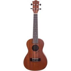 Prodipe Guitars BC210