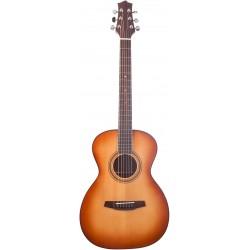 Prodipe Guitars A130