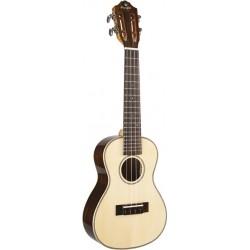 Prodipe Guitars BC400