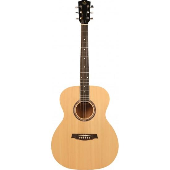 Prodipe Guitars SA25 Auditorium