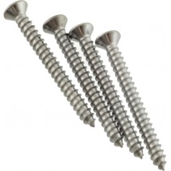 Fender Neck Mounting Screws