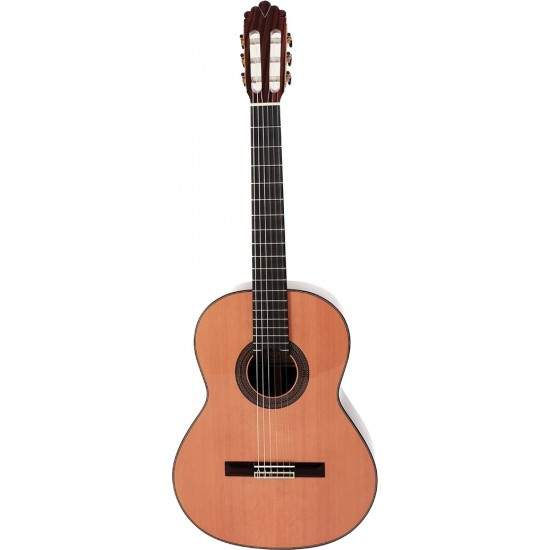Prodipe Guitars Soloist 900