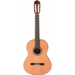 Prodipe Guitars Soloist 700