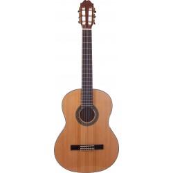 Prodipe Guitars Primera 1/2