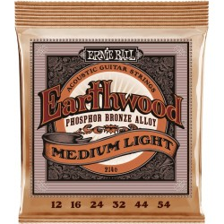 Ernie Ball 2146 Earthwood 12-54