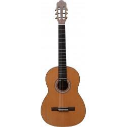 Prodipe Guitars Primera Electro