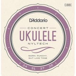 D'Addario EJ88C Ukulélé Concert