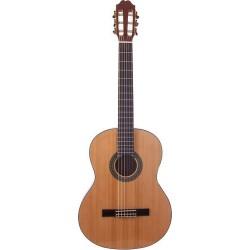 Prodipe Guitars Primera 4/4