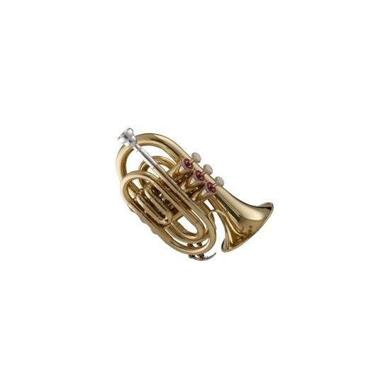 Friedrich Muller TR320 Trompette de Poche