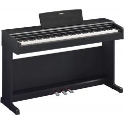 Yamaha YDP-144 Noir Arius