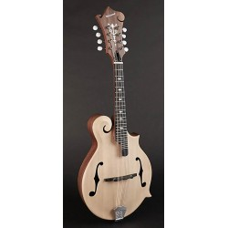Richwood Master Series F-style Mandolin