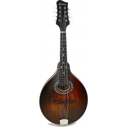 Eastman MD304L Gaucher