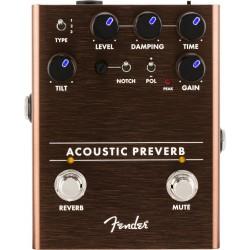 Fender Acoustic Reverb