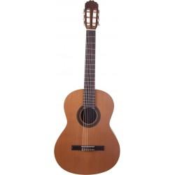Prodipe Guitars Student 4/4